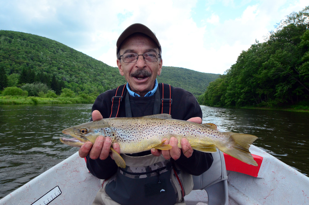 Frank Audino holds a nice, fat alewife-fed brown! Photo: Bob Lewis
