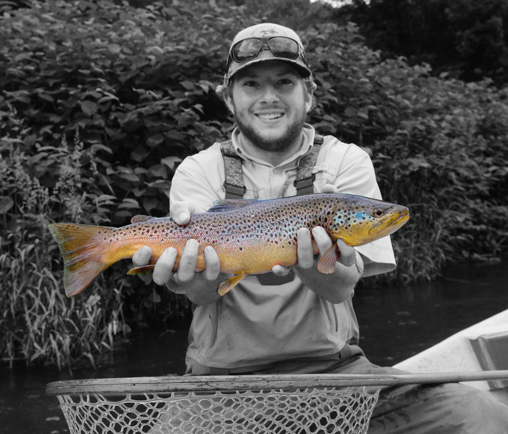 Intern Billy Rivellini wanted to get artistic with this photo of his great brown. Photo: Bob Lewis