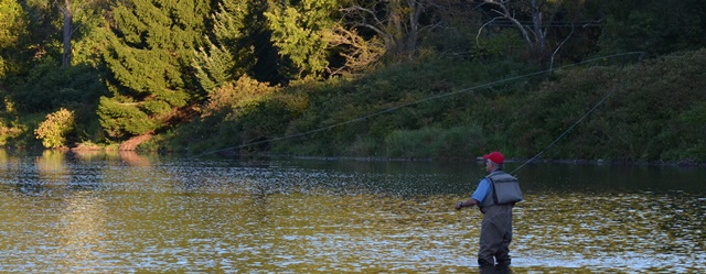 Bob Lewis casting to sippers in the foam on the West Branch last night