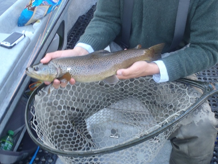 Jim holding a dryfly brown