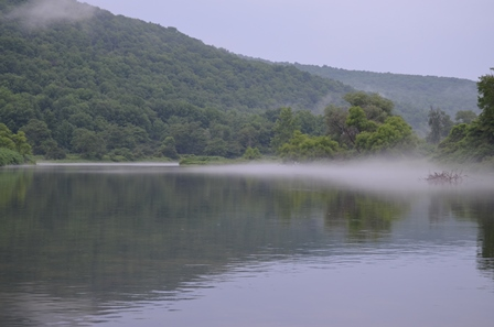 Light wind will make the fog roll in and out on humid days