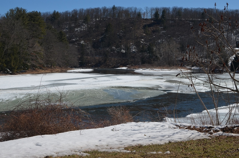 The West Branch is a good mix of ice and open water.  Spring is coming!