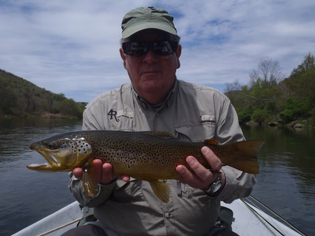 Dennis with a nice brown yesterday.  Photo by Bruce Miller