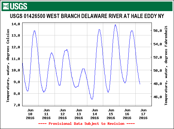 Water temperatures at Hale Eddy are in great shape