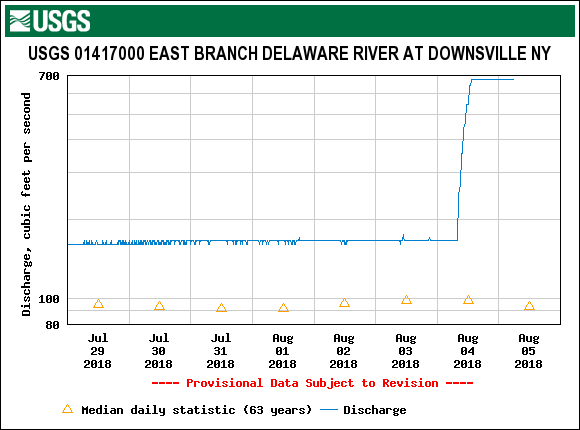 The East Branch at Downsville this morning