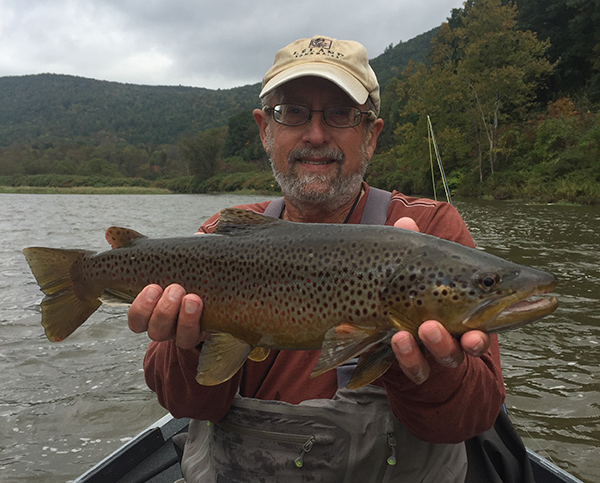 Bruce with a brown showing its fall colors. Photo by Fred Nelson