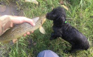 Jesse Bardwell introducing Pheobe to trout fishing young!
